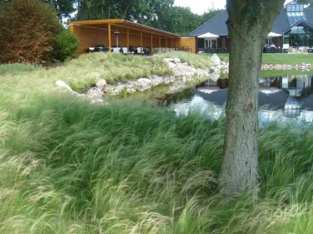 Golfclub Hamburg-Holm, Grassteppe